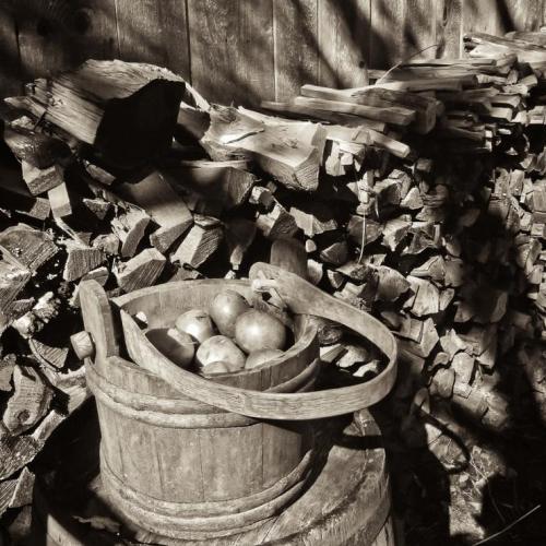 Old Apple Bucket
