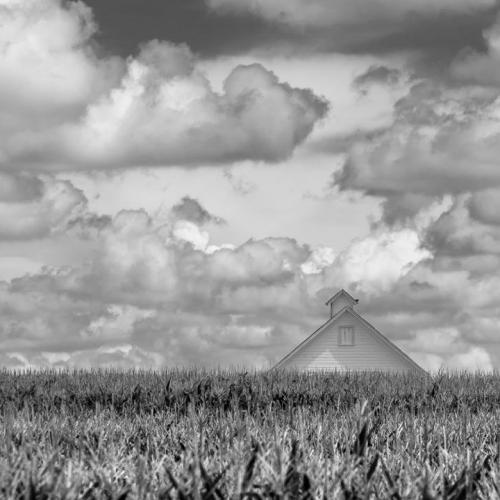 Colorado corn field with yellow barn.