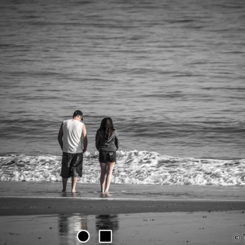 Beach Scene. Myrtle Beach State Park, SC.